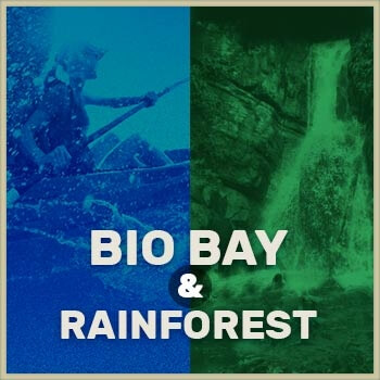 Bio Bay & El Yunque Rainforest preview button