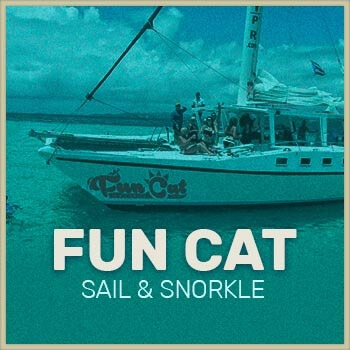 Fun Cat Catamaran Puerto Rico icon