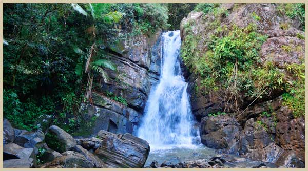 El Yunque Rainforest waterfall